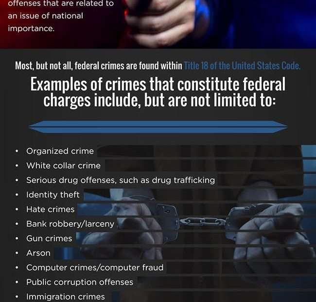 Computer System Criminal Offenses as well as Government Offenses -